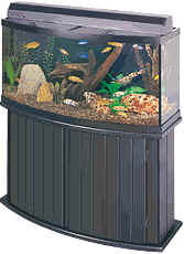 Buy 46 Gallon All-Glass Bow Front Combo