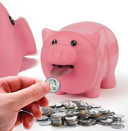 Buy Hungry Pig Bank