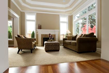 Buy Pour tapis commercial & résidentiel SOUS-TAPIS DURA®
