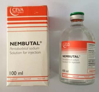 Buy NEMBUTAL PENTOBARBITAL PILLS , LIQUID & POWDER
