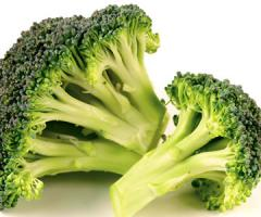 Fruits and Vegetables Broccoli
