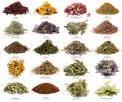 Fresh herbs by Islands West