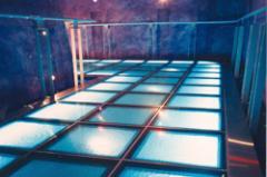 Glass Flooring, SegaCity Playdium