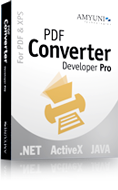 Pdf converter developer pro