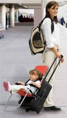 Ride On Carry On Baby & Child Travel Seat