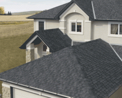 Asphalt shingles and the accessories