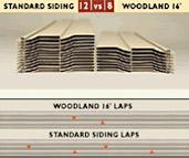 Royal woodland panels 16
