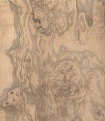 Die Holzspanplatten