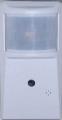 Motion Detector Cam