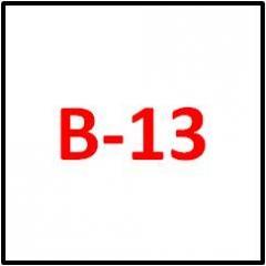 Electronic B-13 Filing