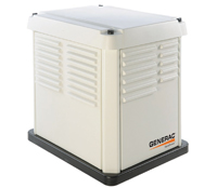 Rental power generators