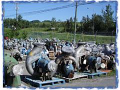Pumps refurbishing activity