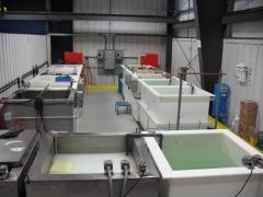 Nickel Sulfamate Plating Line